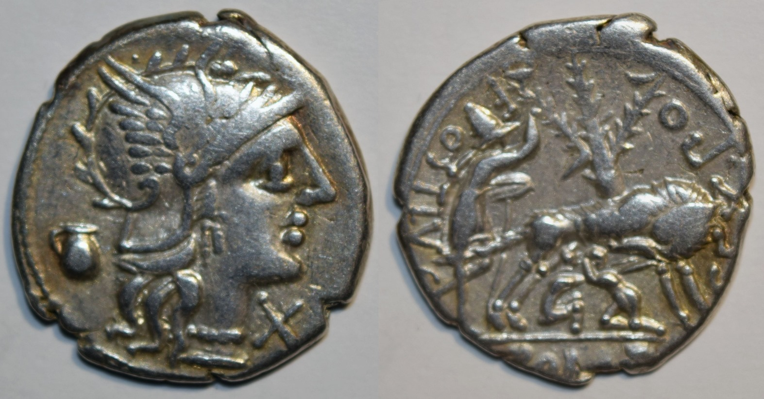 Denarius of Sextus Pompeius with Head of Roma Right / Faustulus with Wolf and Twins.